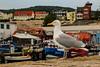 Möwe am Hafen (astrofan80) Tags: möwe ostsee rügen sassnitz tier urlaub vogel