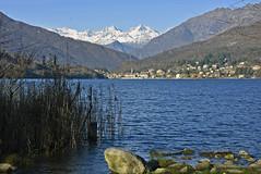 Lago di Mergozzo. (frank28883) Tags: lagomergozzo mergozzolake lacdemergozzo mergozzo lagoprealpino verbanocusioossola verbano autunno coloriautunnali autumn automne otoño canneti alpi vette