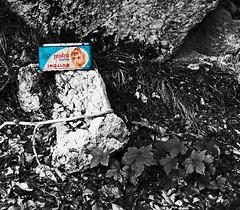 (Lollo [neon]) Tags: nikon sassi rocce rifiuti scatola tristezza latta sottobosco creativit d80 cosevecchie tempochepassa buitoni naturallyartificial neroamet nikonclubit nipiol invenditascarpedabambinomaiusate