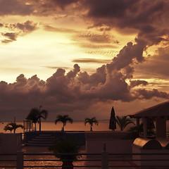 golden drama (uteart) Tags: ocean sunset sky night clouds palms mexico evening cloudy puertovallarta drama rainyseason goldenlight amapas utehagen uteart projectweather olympusomdem5 copyright©utehagen2013allrightsreserved puertovallartabahiadebanderasjalisco