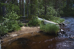 197/365 (hachiko_it) Tags: summer lake tree beach nature water rock forest canon suomi finland table boat bush quiet peace cottage row calm harmony rowing stillness day197 mokki savo eos450d canoneos450d saarijarvi day197365 3652013 chiarasirotti 365the2013edition 16jul13 pohjos