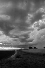storm3aLucis (*Melody*) Tags: trees summer storm clouds path lincolnshire distance pathway summer2013