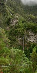 Every waterfall is a teardrop (lugaresadescubrir) Tags: wood cliff portugal forest waterfall rainforest selva bosque santana floresta madeira chute levada bois barranco cascada ilhadamadeira vegetacion cascata jungla fervenza laurisilva caldeiraoverde contremo caldeiraodoinferno contremolad