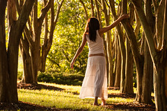 Golden Hour (haddartist) Tags: park trees light woman plants white tree nature sunshine standing back holding warm quiet afternoon shadows dress natural branches warmth posing peaceful sunny calm blouse vegetation virginiabeach graceful magichour goldenhour mylovelywife andrezza