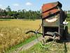 Old Rice Machine, near Ubud, Bali (BaliAdelaide) Tags: bali indonesia rice farming machine ubud subak