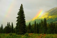 Alaska 2x Rainbow (MarculescuEugenIancuD5200Alaska) Tags: alaska rainbow greenscene landscapesdreams naturethroughthelens fleursetpaysages outstandingromanianphotographers