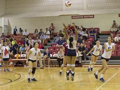 DJT_7230 (David J. Thomas) Tags: sports athletics volleyball arkansas scots batesville lyoncollege