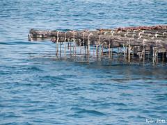 Batea (ivanuski9) Tags: naturaleza spain pontevedra playas ogrove