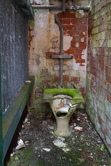 Out of Order (cillinc) Tags: old ireland loo house green broken moss mess seat bricks toilet poo shattered crapper facilities fluse