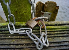Lock and Chain (Sarah Marston) Tags: wood water pier moss weed october rust post lock sony hampshire chain alpha padlock petersfield a65 2013 heathpond