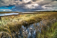 Blakeney Nature Reserve {Explored} (Victor Burclaff) Tags: