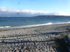 Beach walks 039