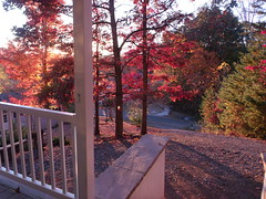 Fall from the porch (DougBittinger) Tags: