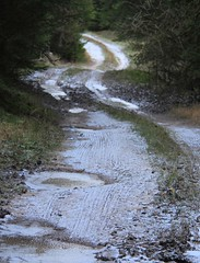 Trail for hoppers (:Linda:) Tags: germany village path hoarfrost curvy thuringia eis rauhreif brden
