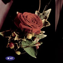 "Buttonhole <a style=""margin-left:10px; font-size:0.8em;"" href=""http://www.flickr.com/photos/111130169@N03/11309072613/"" target=""_blank"">@flickr</a>"