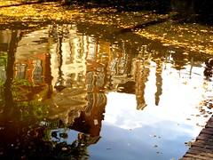 IMG_7008 b  Alkmaar (Traud) Tags: holland reflection wasser netherland alkmaar spiegelung niederlande gracht