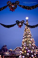 Christmas  @Disneyland (SabrinaM.) Tags: christmas xmas paris bokeh disneyland mickeymouse canon50mmf14 bokehlicious