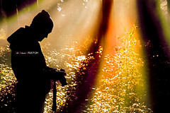 Yo / Mi / Me... (Jabi Artaraz) Tags: light luz contraluz sony zb niebla haya bruma argia pagoa lainoa abetos euskoflickr superaplus aplusphoto jartaraz alfa350 izeiak