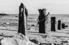 (Damien Cox) Tags: uk shadow sea blackandwhite beach water sand nikon westsussex stones elmer groin bognorregis damiencox dcoxphotographycom