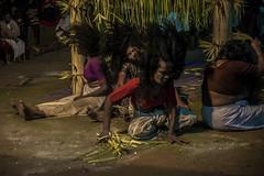 sarppam pattu & thullal (dance to snakes)