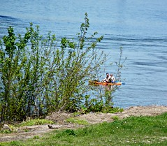 People in a Boat on the Susquehanna (di_the_huntress) Tags: river boat spring susquehanna picmonkey:app=editor