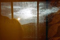 Redscale/Dupla-exposição (André Auke) Tags: 2 35mm vintage olympus pelicula filme xa duplaexposição redscale yashicamg3