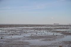 Tausende Wattwurm Haufen (SpotShot) Tags: sea beach water strand canon deutschland eos meer wasser flat mud tide low north 7d 17 55 nordsee f28 watt ebbe cuxhaven 1755 niedersachsen wattwurm 1755mm canonefs1755mmf28isusm canon1755mmf28 canoneos7d