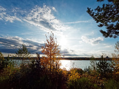 October light (Petr Horak) Tags: bohemia clouds czechrepublic europe lake sky southbohemia sun sunset water woods autumn tree halmky czechia cze