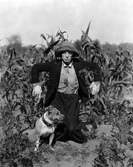 The Scarecrow (www.brevestoriadelcinema.org) Tags: 1920 busterkeaton thescarecrow
