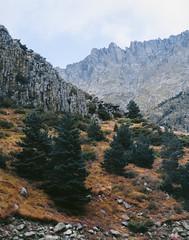 (andrey_kireev) Tags: mountains mediumformat mf filmfilmforever fujiprovia400 film analog analogue autumn summer stones pentax6x7 67 pentaxsmc105mmf24 hills hiking landscape