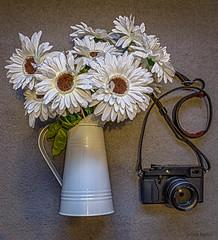 Still life (David Baldock Photography) Tags: flower indoor life stillife