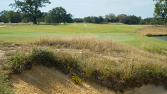 Fringed bunkers behind 18 (cnewtoncom) Tags: mossy oak golf club mississippi gil hanse architecture gilhanse golfarchitecture mossyoakgolfclub
