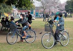 Daishi Park (Toni Kaarttinen) Tags: japan  japonia    jap japonsko jaapan  japani japon xapn    japn jepang an tseapin giappone  japna japonija  japo  japonska japn hapon  japonya nht bn japanese kawasaki spring boy boys bike bikes park daishi daishipark