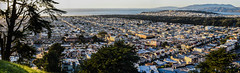 over the outer sunset panorama (pbo31) Tags: sanfrancisco california nikon d810 november fall boury pbo31 color bayarea grandviewpark innersunsetdistrict over view rooftops goldengatepark skyline city green urban panoramic large stitched panorama goldengateheights pacific ocean