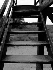 Stairs (Maribel GM) Tags: parquenatural lagunas lamata torrevieja naturaleza nature flamencos flamingos stairs escalera