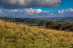 Lyme Park View 2 (21mapple) Tags: lyme lymepark park nationaltrust nt national trust trees tree tranquil green grass clouds cloudy sun sunny canon750d canon canoneos750d canoneos countryside landscape stockport hills