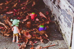 (Iggy Summers) Tags: yotsuba domo fall leaves walk friends toyphotography