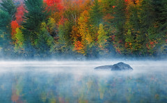 Misty Morning (Ania.Photography) Tags: fall mist morning forest autumn fog