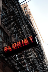 Florist (nyperson) Tags: newyorkcity fireescape neon sign