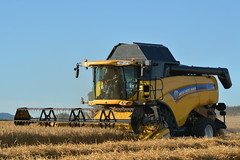 New Holland CX8070 Combine Harvester cutting Winter Barley (Shane Casey CK25) Tags: new holland cx8070 combine harvester cutting winter barley yellow cnh nh newholland casenewholland castletownroche grain harvest grain2016 grain16 harvest2016 harvest16 corn2016 corn crop tillage crops cereal cereals golden straw dust chaff county cork ireland irish farm farmer farming agri agriculture contractor field ground soil earth work working horse power horsepower hp pull pulling cut knife blade blades machine machinery collect collecting mähdrescher cosechadora moissonneusebatteuse kombajny zbożowe kombajn maaidorser mietitrebbia nikon d7100