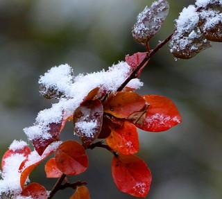 Winter trifft Herbst