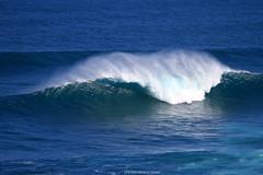 IMG_2273 copy (Aaron Lynton) Tags: surfing lyntonproductions canon 7d maui hawaii surf peahi jaws wsl big wave xxl