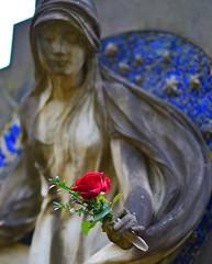 Munich - The Rose (cnmark) Tags: germany munich deutschland mnchen bayern bavaria sdlicher friedhof grabmal gedenkstein grabstein statue southern cemetery graveyard gravestone tombstone headstone tomb rose bokeh allrightsreserved