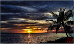 Hawai'i, Paradise (wyattgphotography) Tags: coverpage stunningnikon sunset ocean reflection clouds color paradise palmtree surfing beautiful stunning awesome best sail calm tradewinds wyattgphotography uugphotography uug vistas wyattg gociggie bigisland waterfalls love peace relax explore nature