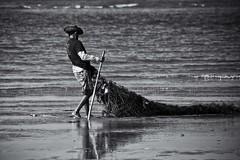 Pescatore #2 (Luca Bacciottini) Tags: brazil pesca brasile pescatore rete maranhao