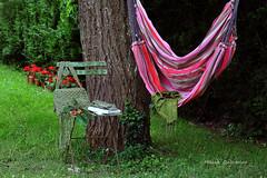 La douceur de l'ombre (Hélène Quintaine) Tags: sac jardin ombre été lunettes arbre livre cerise chaise bois pelouse fer herbe feuille lierre tronc tissu écharpe hamac rayures franges