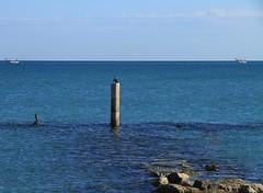 vedette in mare - Marina di Montemarciano (walterino1962 / sempre nomadi) Tags: nuvole mare ombre luci rocce riflessi ancona scogli ostra cormorani pescherecci palodicemento