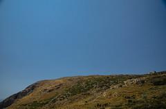 DSC_4839.jpg (-eudoxus-) Tags: nikon flickr mani greece cap peloponnese 2013 tenaro d7000 captenaro