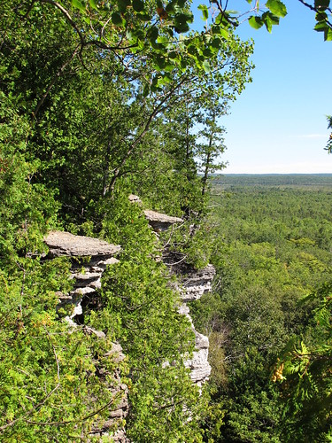 Cup and Saucer Trail 4