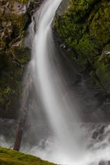 Long exposure of Sol Duc F (Alaskan Dude) Tags: travel washington rainforest wastate nationalparks olympicnationalpark solducfalls